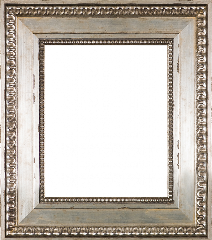 Versailles Silver King Frame 8