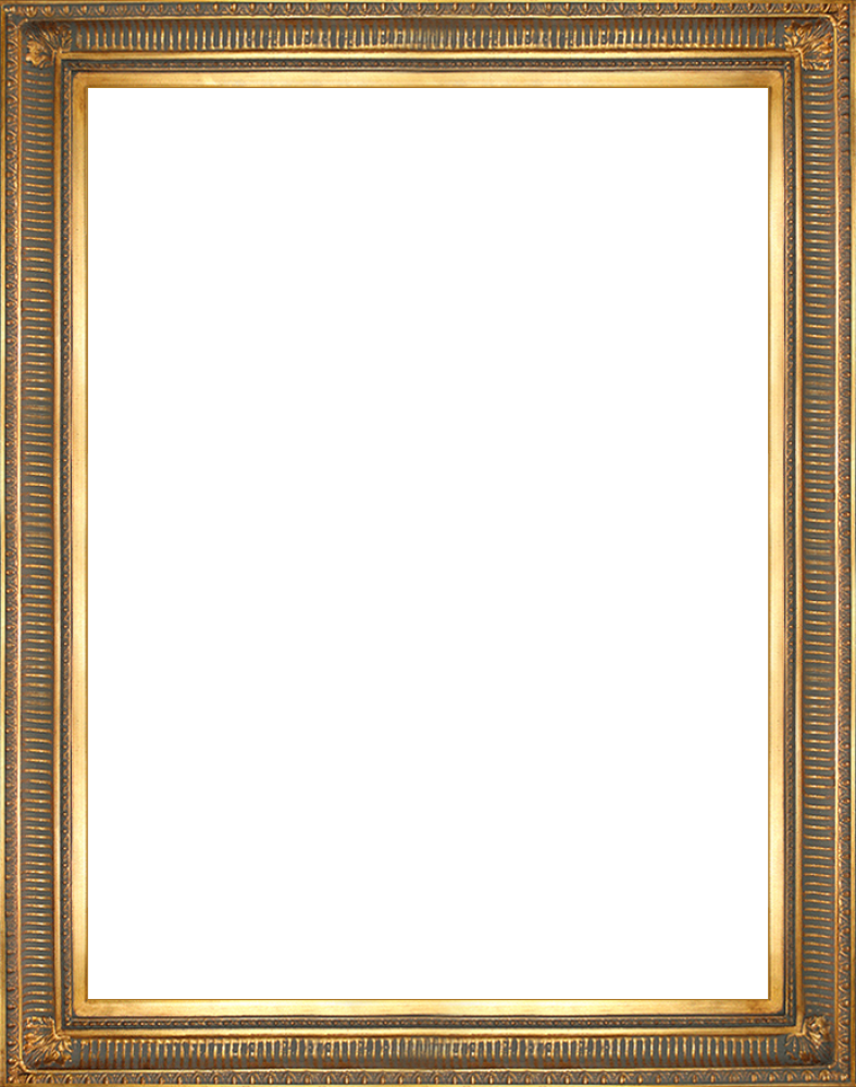 "Regal Gold Frame 30""X40"""