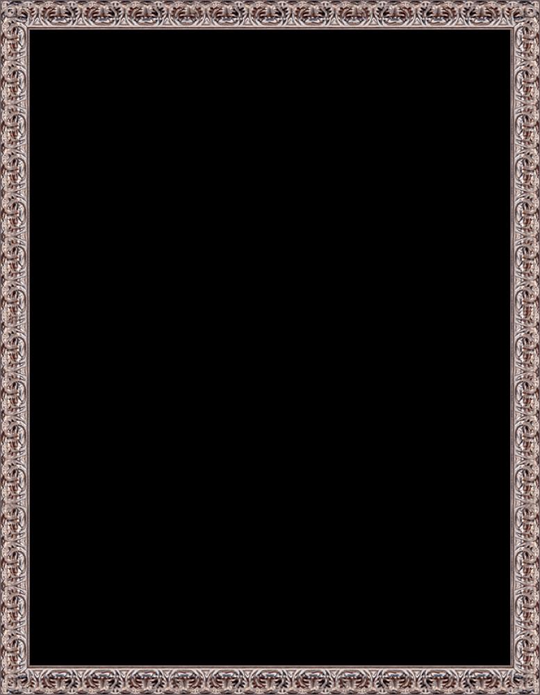 """Silver Oak Leaf Frame 36""""X48"""""""