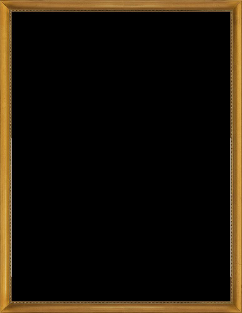 Verona Gold Frame 36
