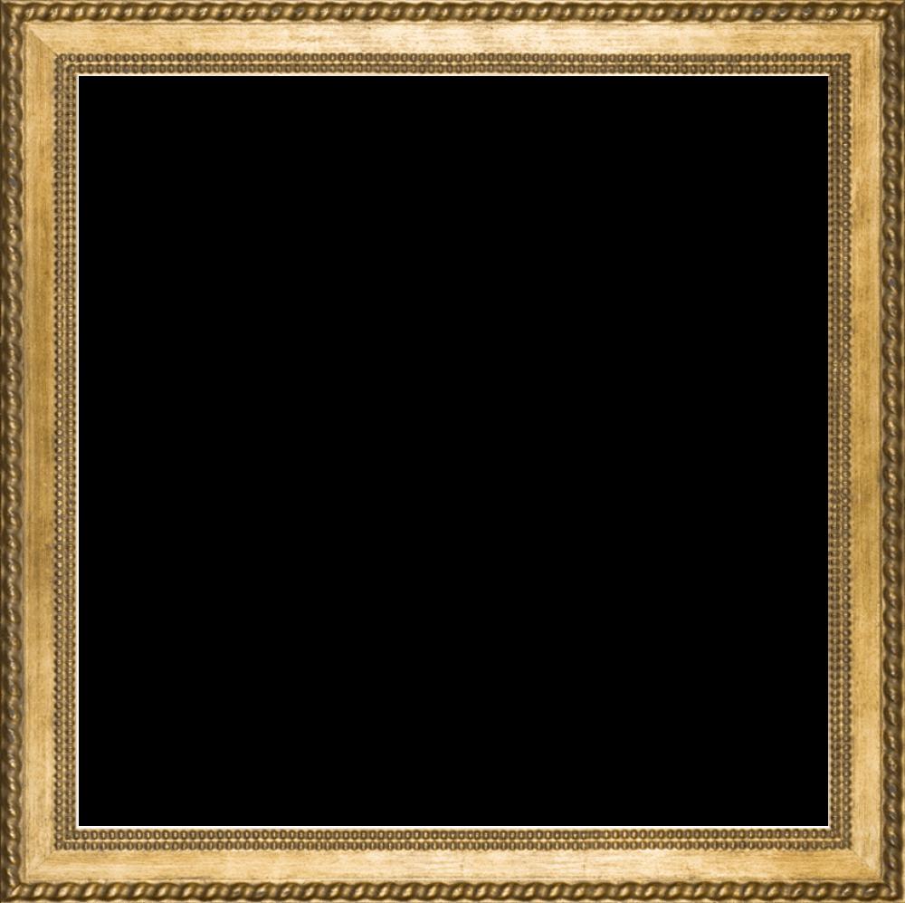 Verona Gold Braid Frame 24