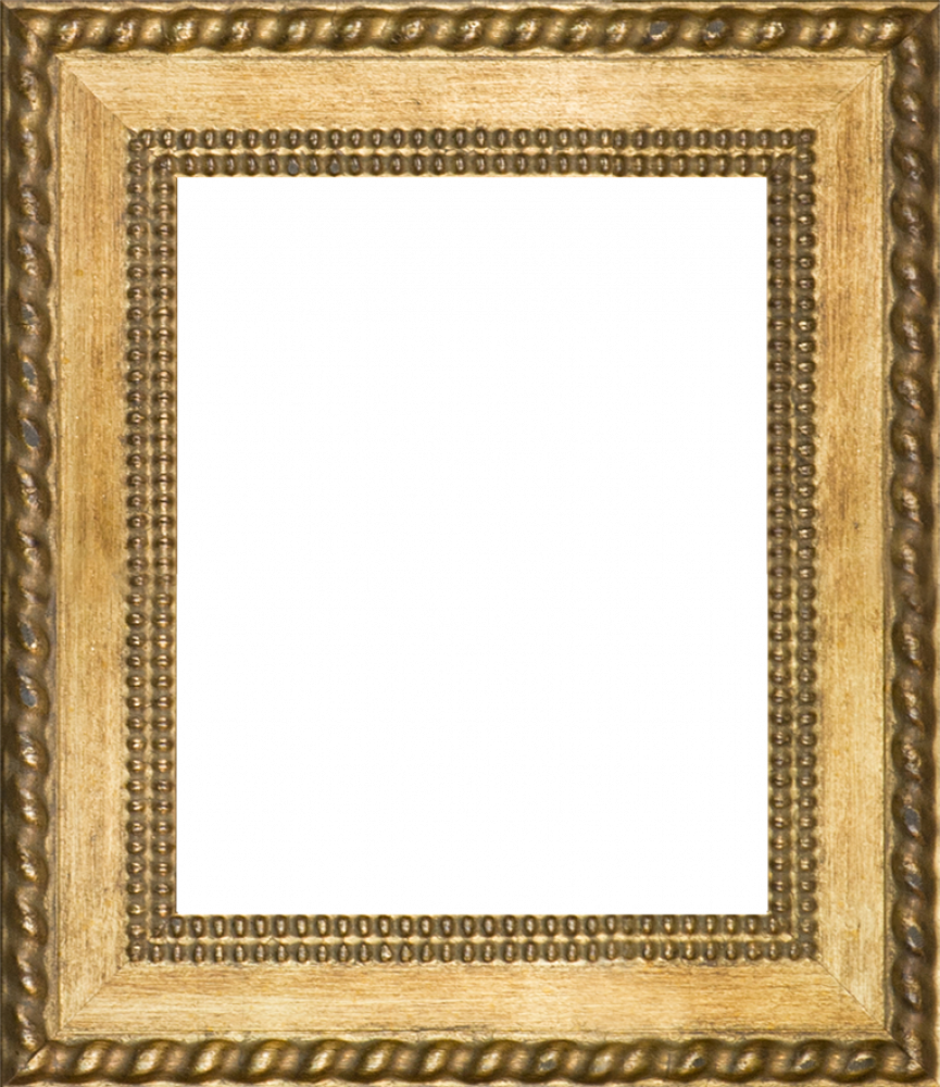 "Verona Gold Braid Frame 8""X10"""