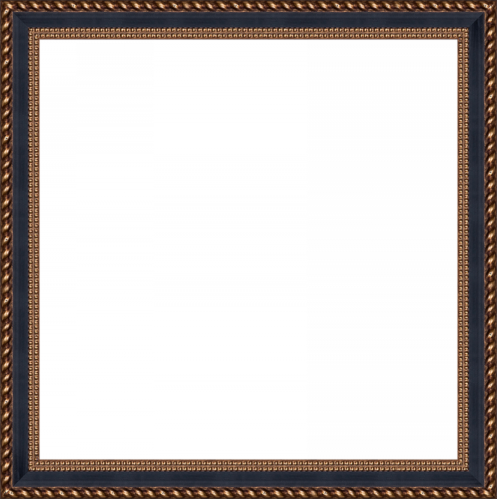 "Verona Black/Gold Braid 24""X24"""