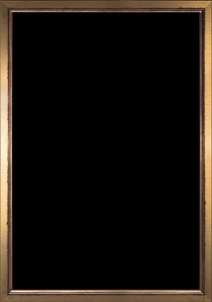 Burnished Gold Frame 24