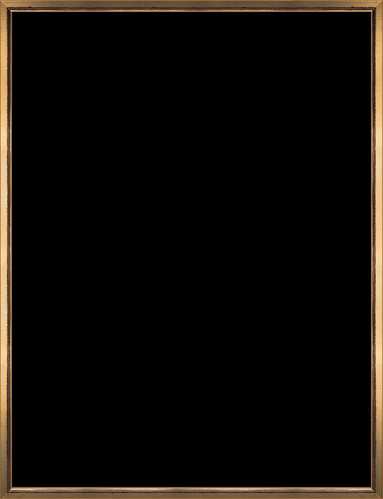 Burnished Gold Frame 36
