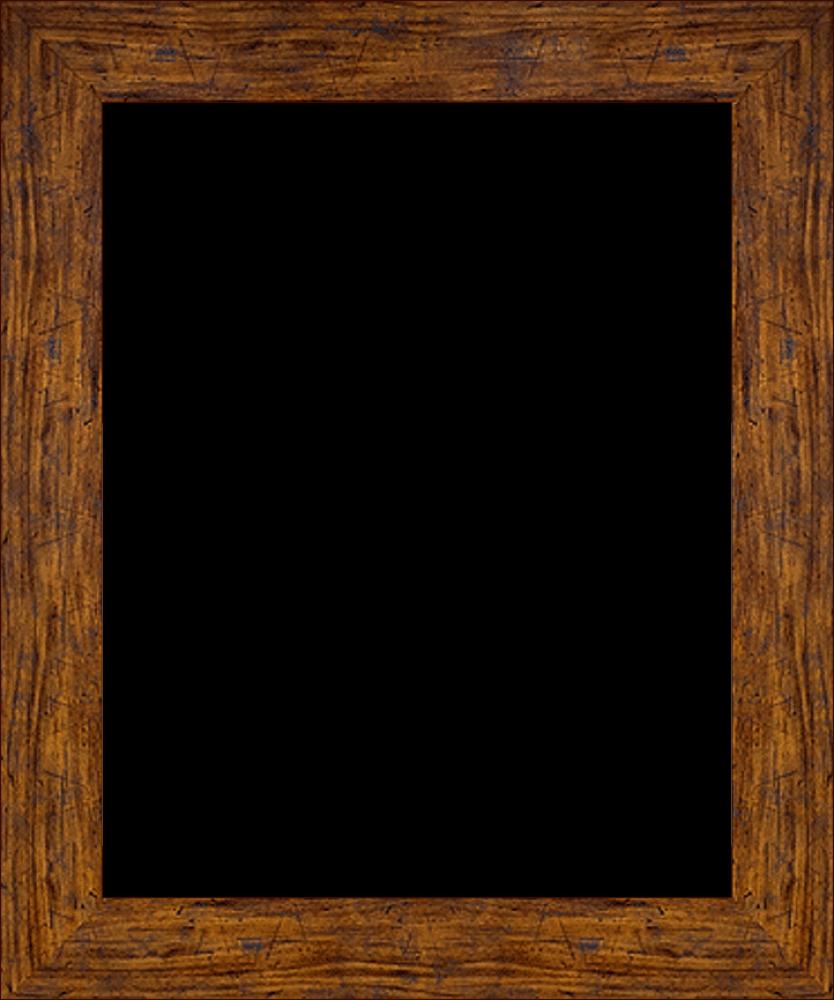 """Vintage Gold Frame 16""""X20"""""""