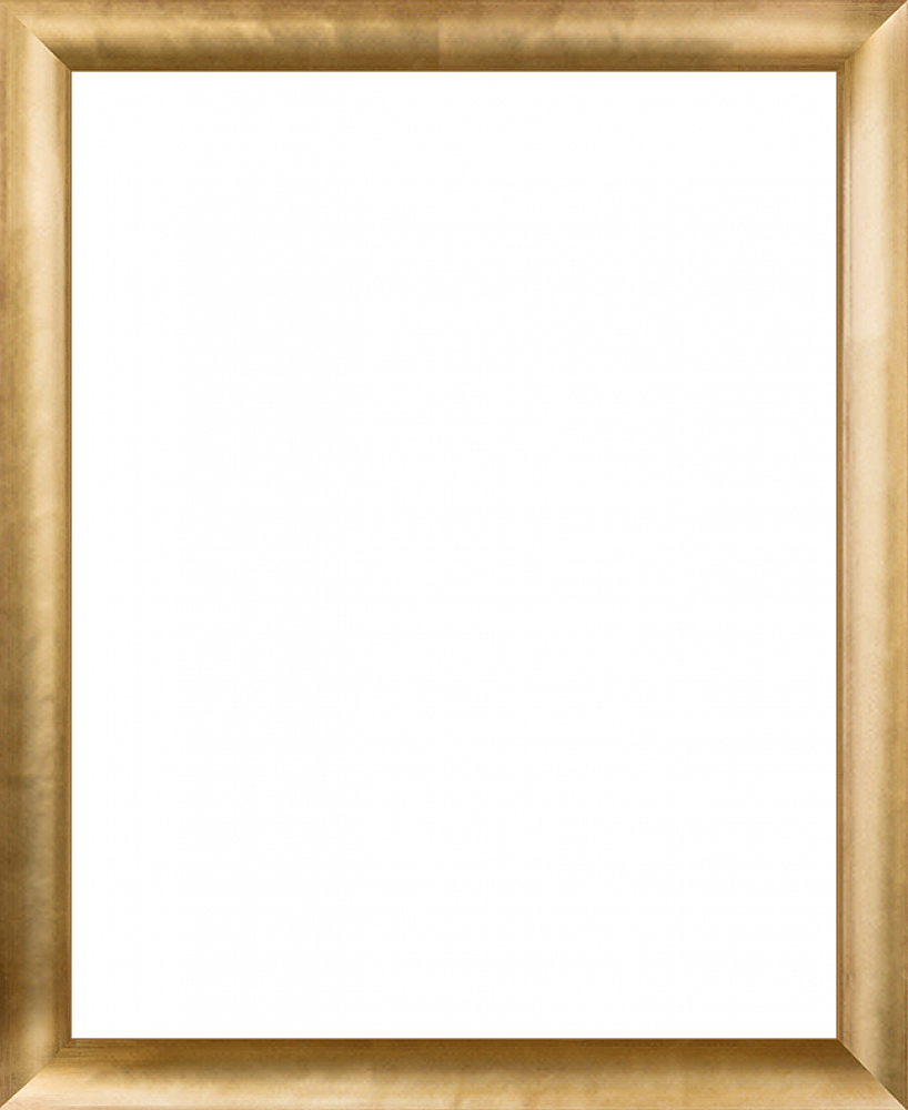 Gold Luminoso Frame 16