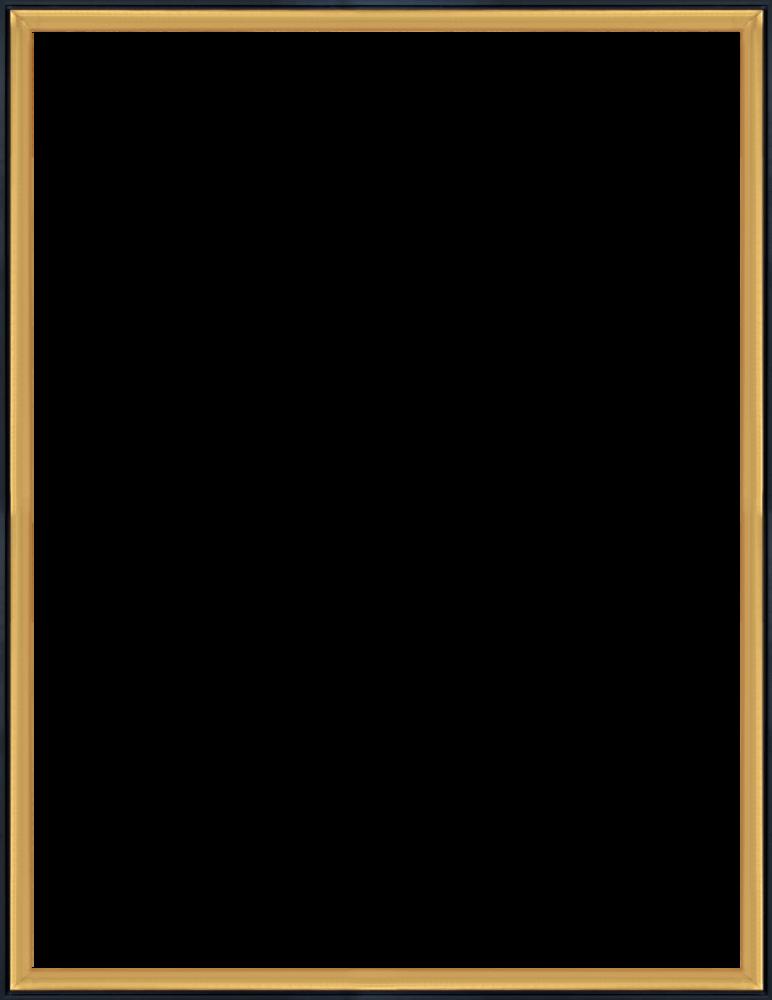 Burnished Gold and Black Wrap Custom Stacked Frame 36