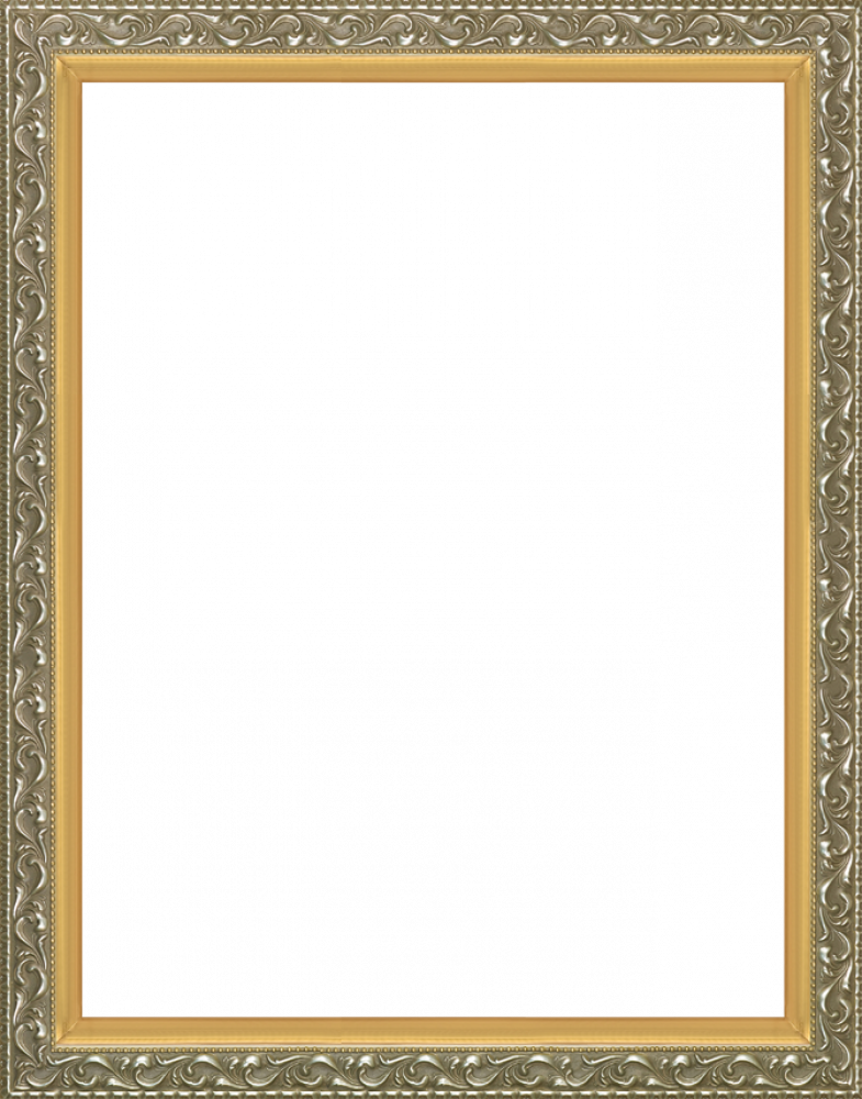 Rococo Silver and Burnished Gold Custom Stacked Frame 30