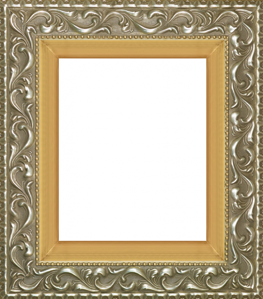 Rococo Silver and Burnished Gold Custom Stacked Frame 8