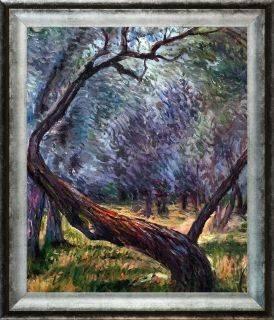 Olive Trees (Study) Pre-Framed