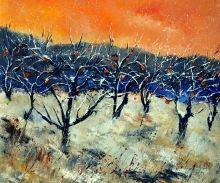 Apple Trees in Winter
