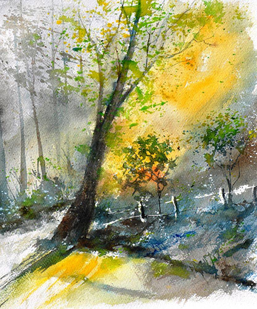 Watercolor 114081
