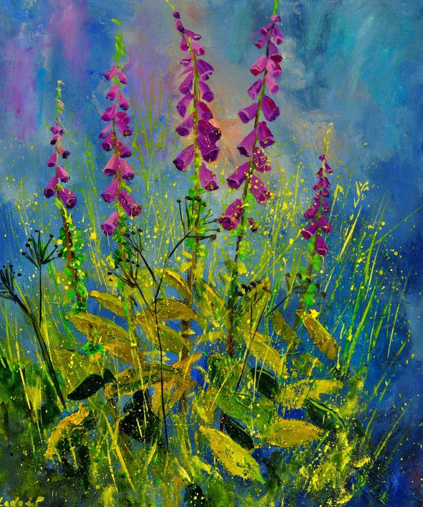 Foxgloves 671170
