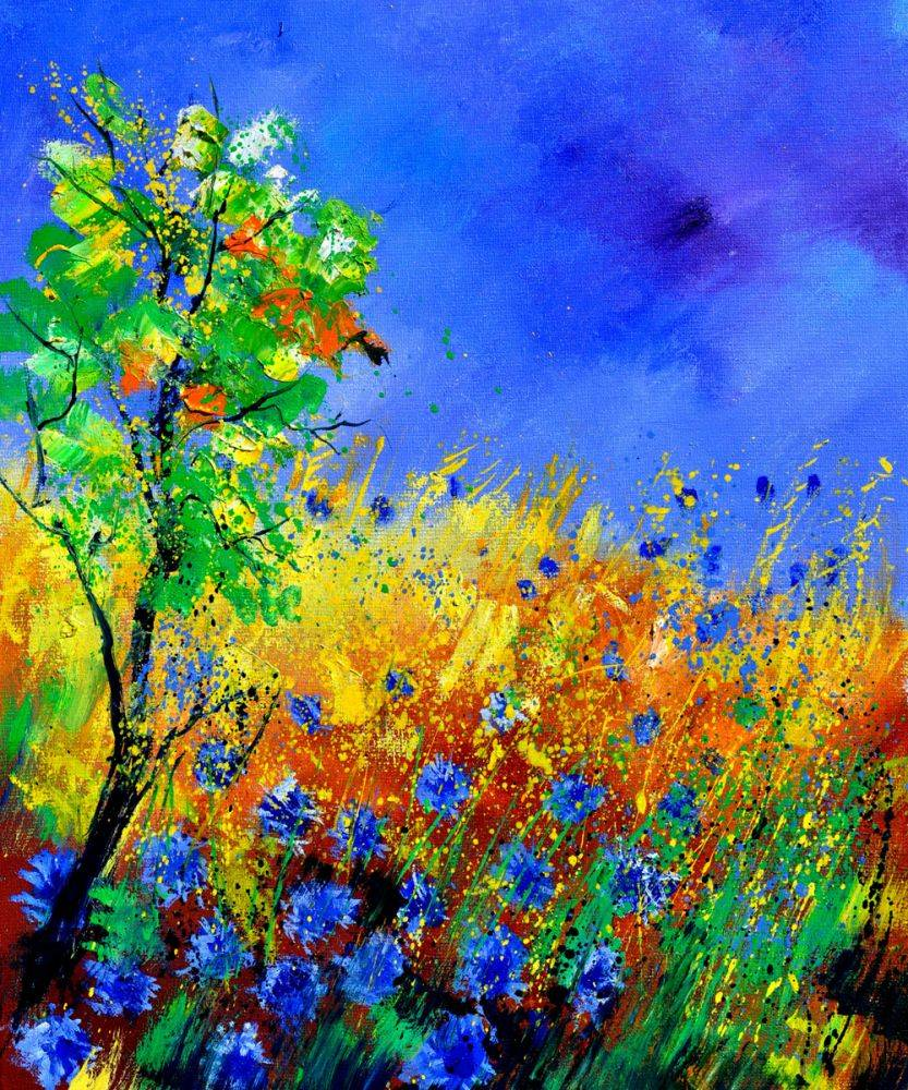 Cornflowers 1170