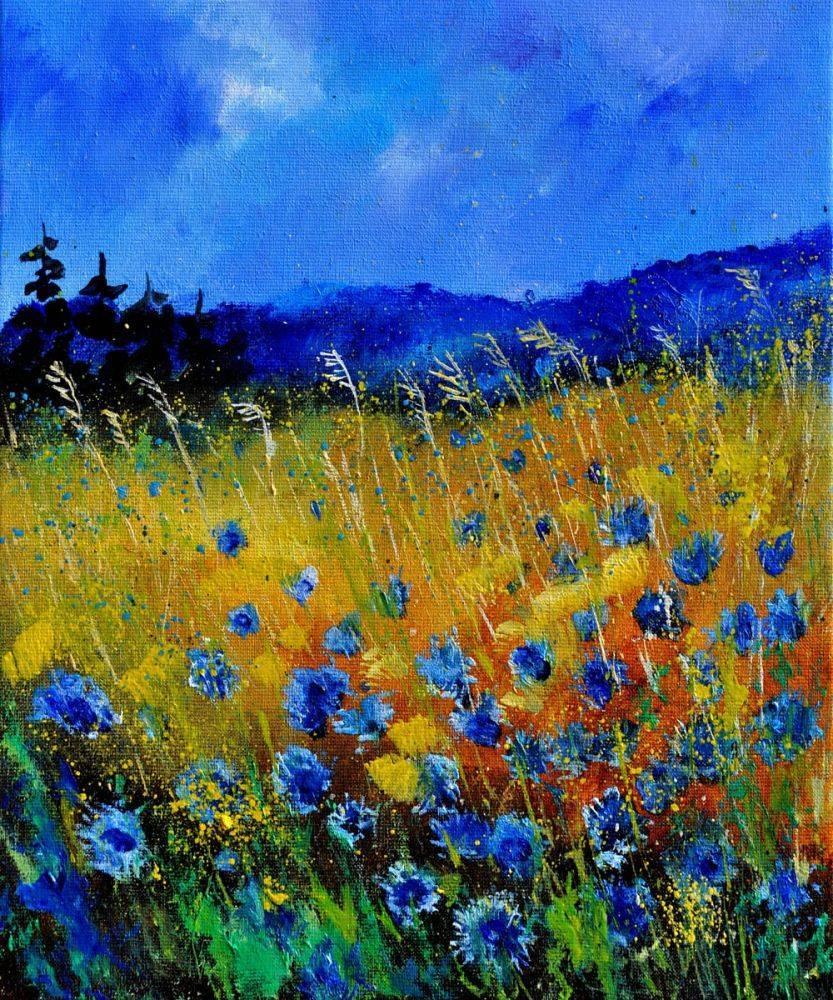 Cornflowers 45