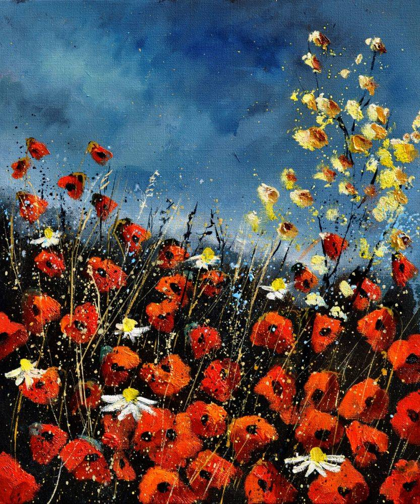 Red Poppies (451140)