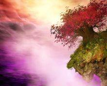 Tree on the Verge