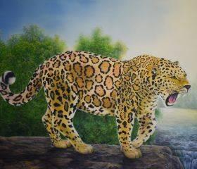 Jaguar Ferocity