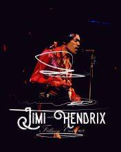 Jimi Hendrix at the Concert