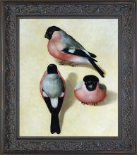 Three Bullfinches Preframed