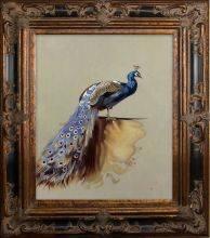 Peacock (Luxury Line) Pre-Framed