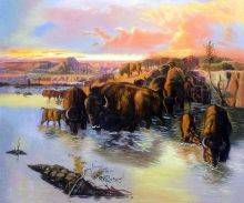 The Buffalo Herd