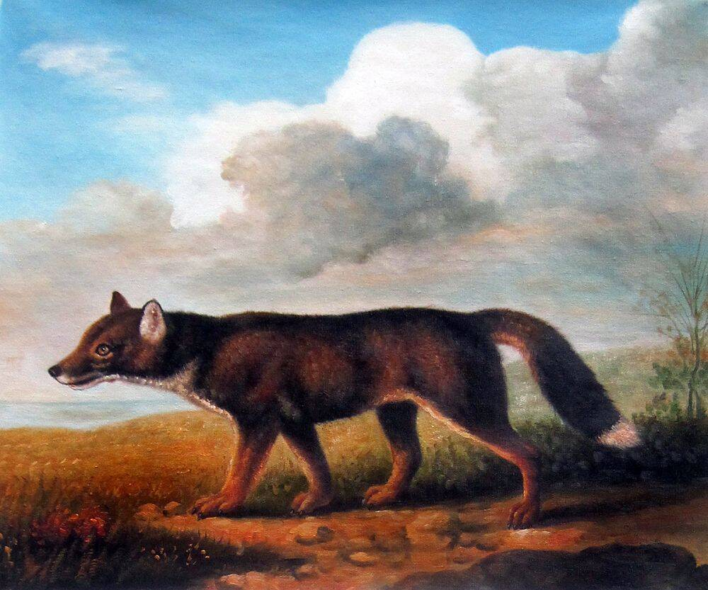 Portrait of a Large Dog
