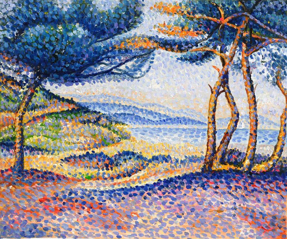 Pines Along the Shore
