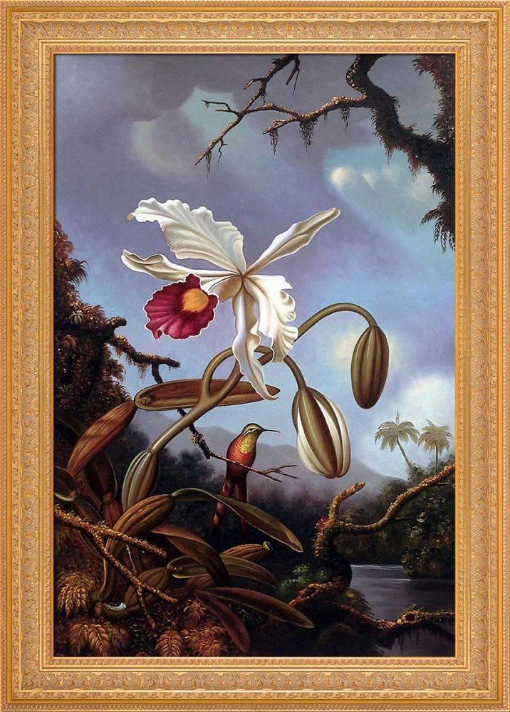 White Brazilian Orchid, 1875-1890 Pre-Framed