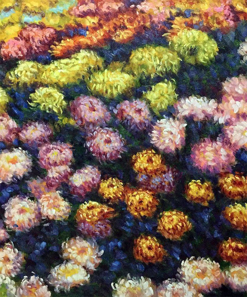 Bed of Chrysanthemums