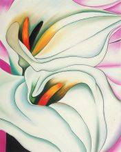 Two Calla Lilies On Pink, 1928