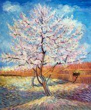 Pink Peach Tree in Blossom