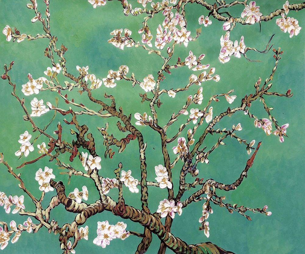 Branches of an Almond Tree In Blossom, Jade Green