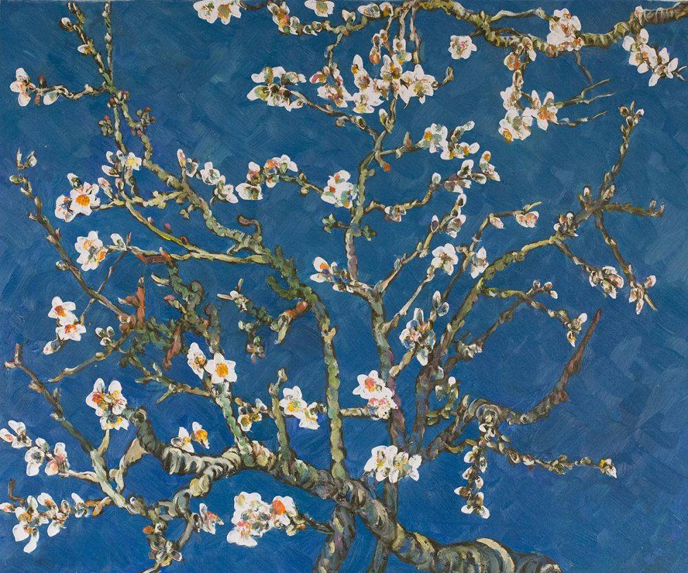 Branches Of An Almond Tree In Blossom