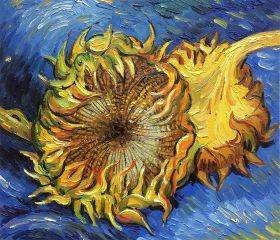 Two Cut Sunflowers