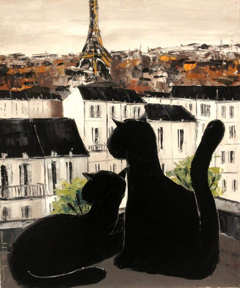 Black cat with his pretty on Paris roofs