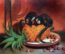Brazilian Marmosets