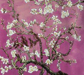 Branches of an Almond Tree in Blossom, Magenta