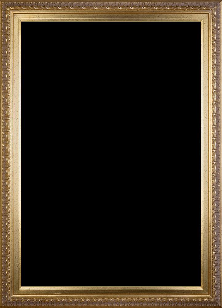 Elegant Gold Frame 24