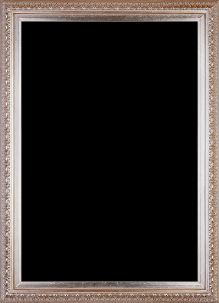 Elegant Champagne Frame 24