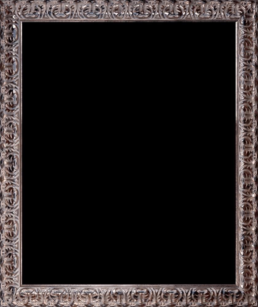 """Silver Oak Leaf Frame 20""""X24"""""""